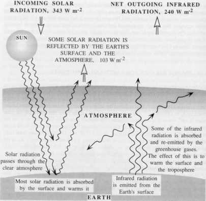 About one-third of incoming solar radiation is reflected and the remainder